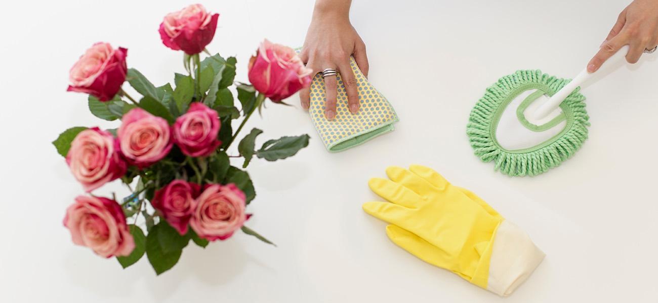 mit 6 hausmitteln zum blitzblanken zuhause tchibo blog. Black Bedroom Furniture Sets. Home Design Ideas