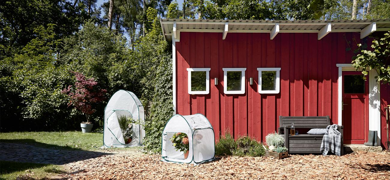 pflanzen winterfest machen unsere tipps tchibo blog. Black Bedroom Furniture Sets. Home Design Ideas